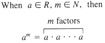 Notation of Polynomial